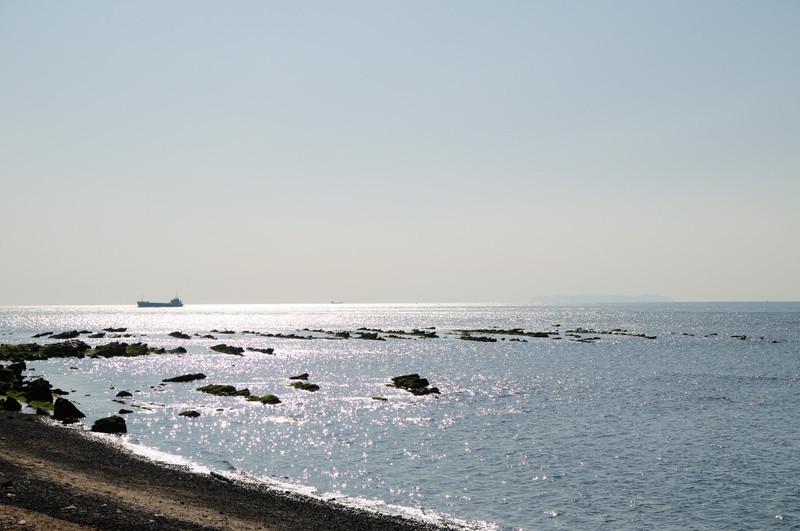 20100221_005