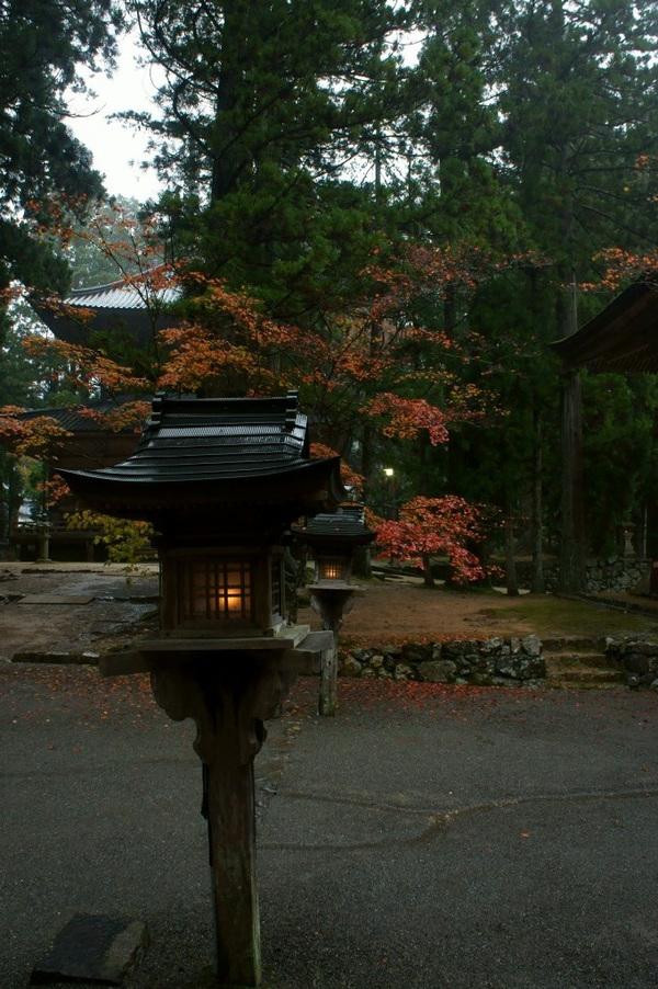 20111106_117